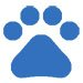 pet stain removal in New London NC